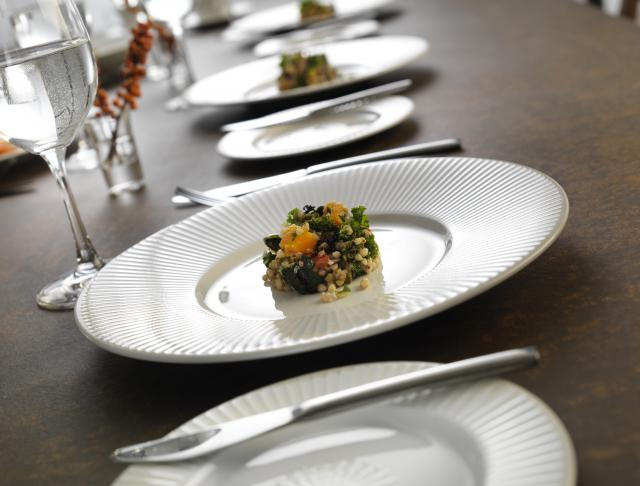 catering-crockery-wiilow-distinction