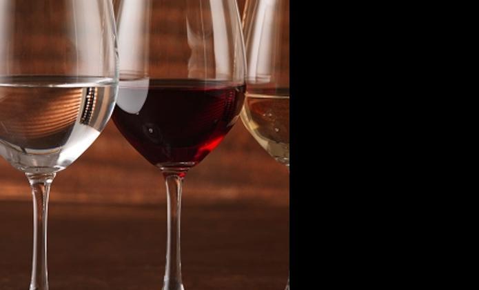 Wine Lover - Catering Wine Glasses