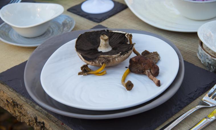 performance-catering-tableware-