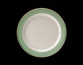 Slimline Plate  15290209