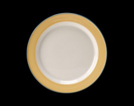 Slimline Plate  15300227