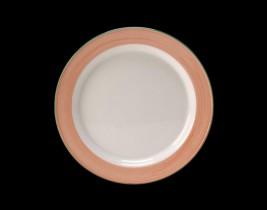 Slimline Plate  15320214