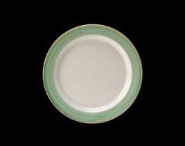 Slimline Plate  15290211
