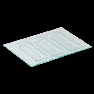 Rectangle 3 Parallel Compartment Tray