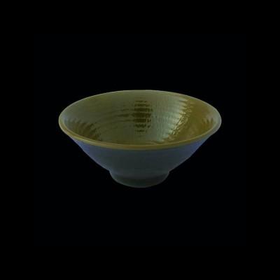 Bowl, Lizard